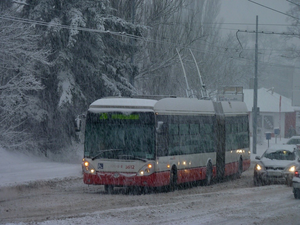 Fotogalerie » Škoda 25Tr Citelis 1B 3612 | Brno | Židenice | Rokytova