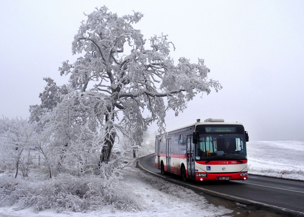 Fotogalerie » Irisbus Crossway LE 12M 7B3 3912 7802 | Brno | Soběšice | Zeiberlichova