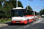 Karosy B961 tvořily na konci roku 2020 většinu provozovaných vysokopodlažních autobusů. Často jsou mimo jiné nasazovány na kurzy, které nelze obsadit kloubovým trolejbusem z důvodu jejich nedostatku